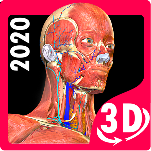 Anatomy Learning apps